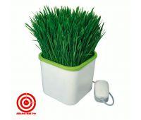 Проращиватель семян гидропонный Здоровья клад